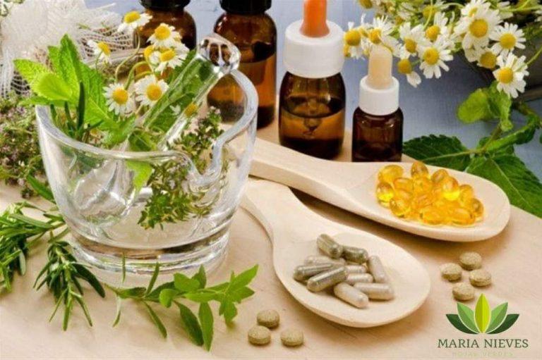 Las 15 mejores plantas medicinales, efectos y contraindicaciones